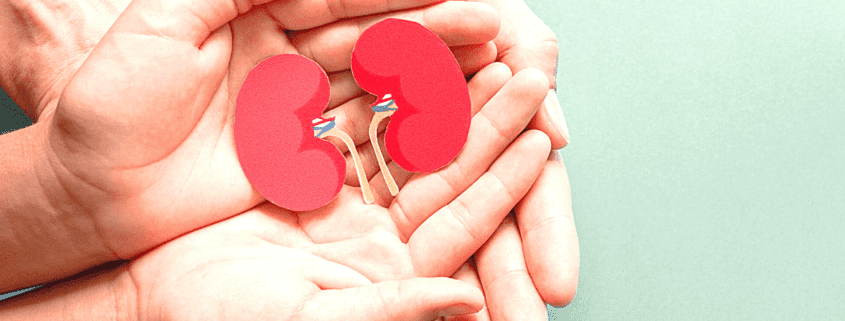 World Kidney Day is celebrated on March 12th.